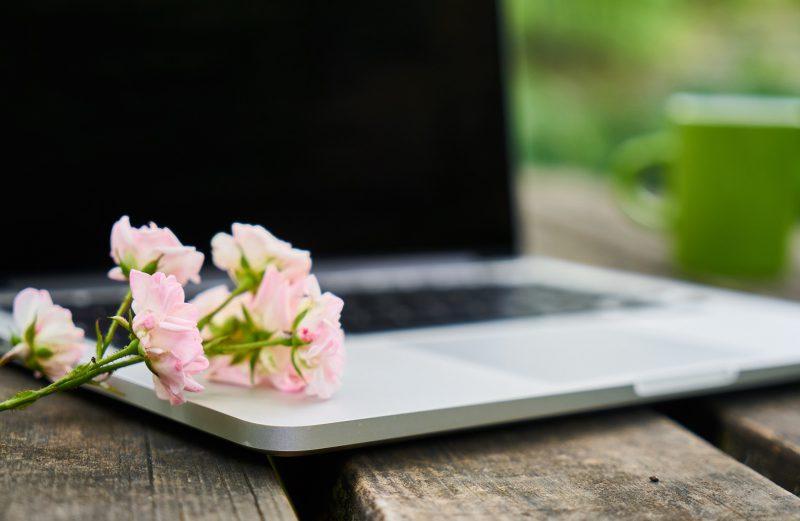 O roślinach i kwietnikach na facebooku